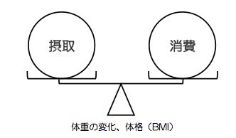 エネルギー収支バランスの基本概念